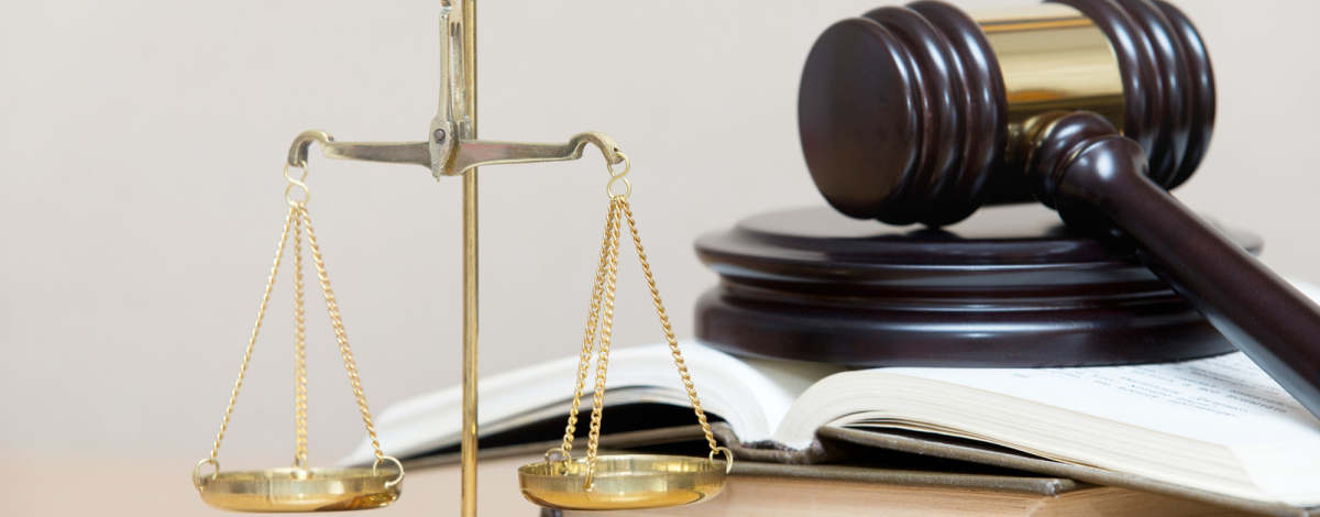Sprachreisen Business English for lawyers